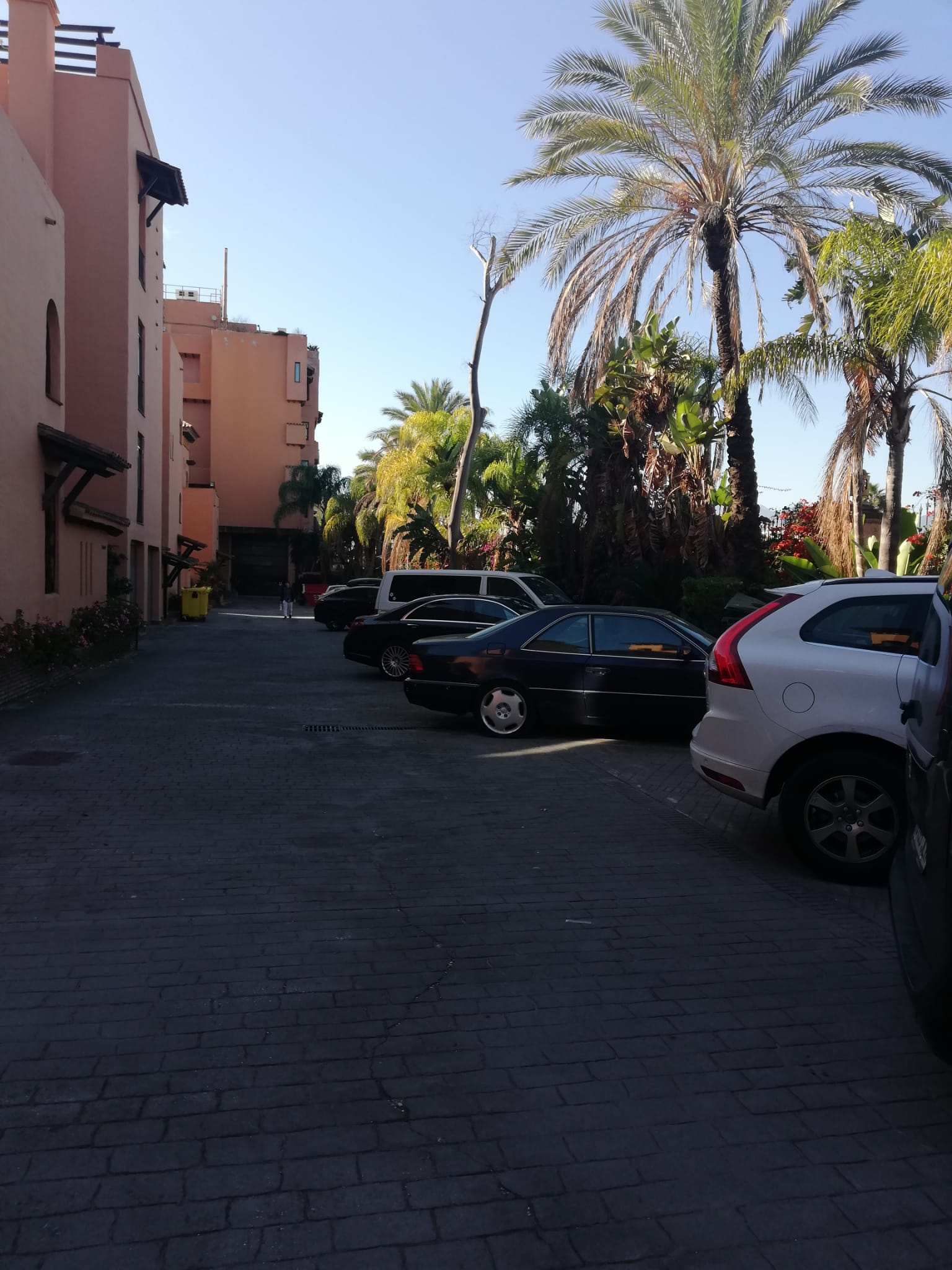Studio for rent near the sea in Cancelada - mibgroup.es
