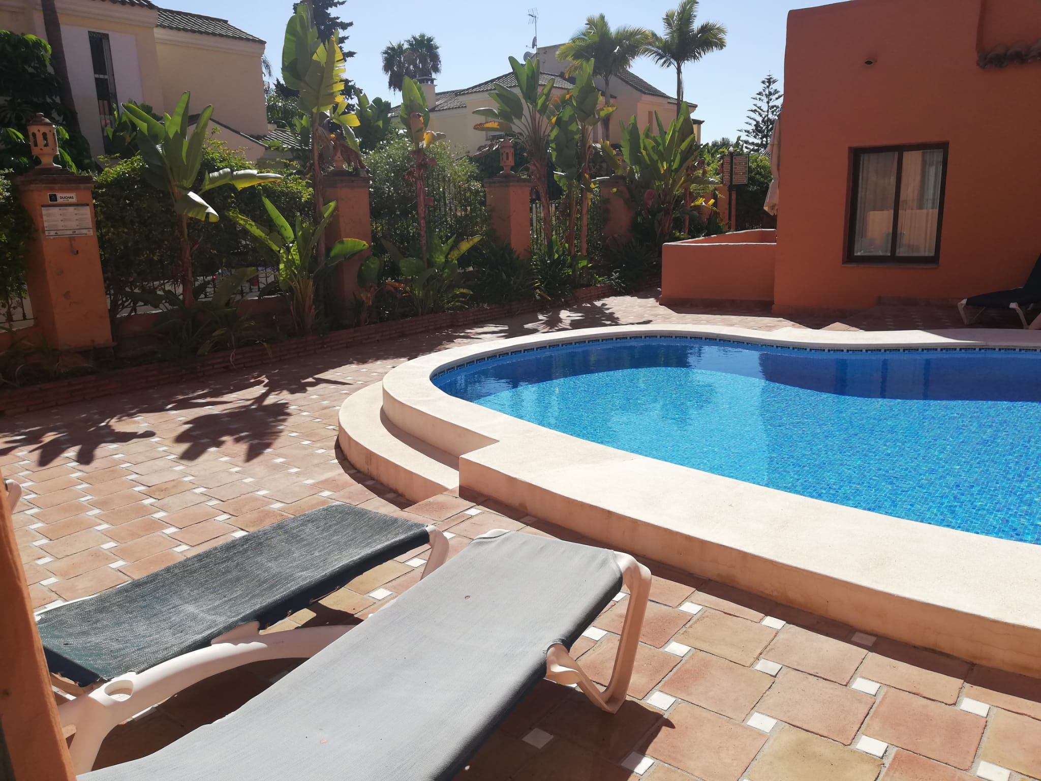 Studio for rent in Cancelada near the beach - mibgroup.es